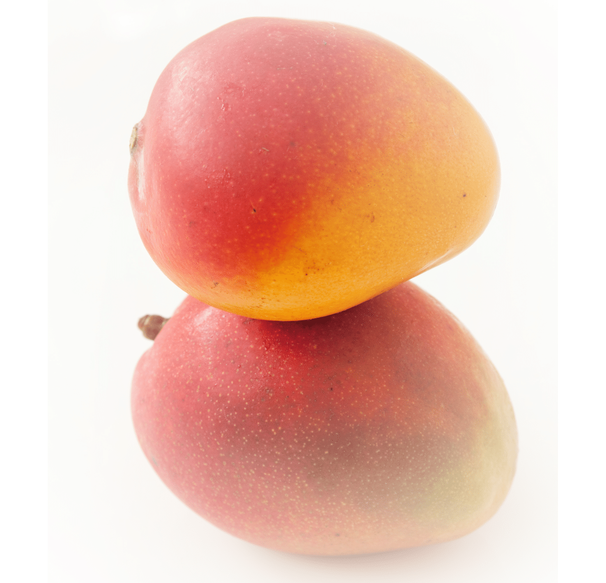 Mango 3Mango 2